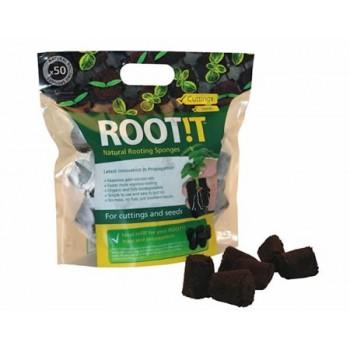 eponge coco pour graine et bouture