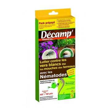 nematodes contre mouches de terreaux et vers blanc