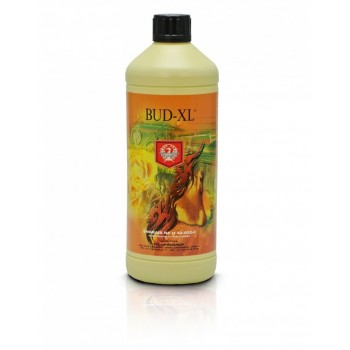 House&Garden Bud XL 1 Litre