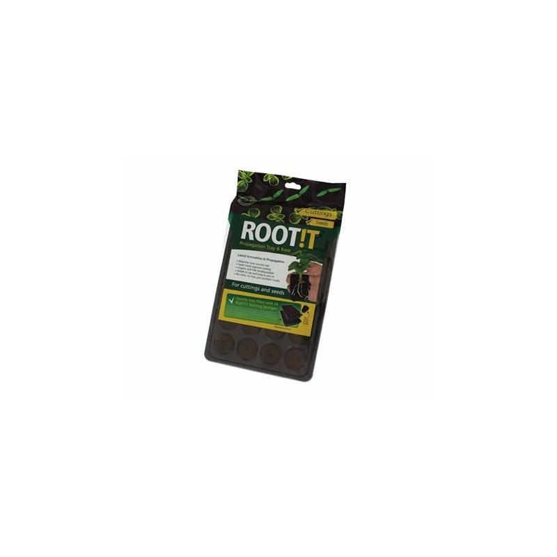 Rootit Plateau 24 éponges Sphaigne pour graine bouture