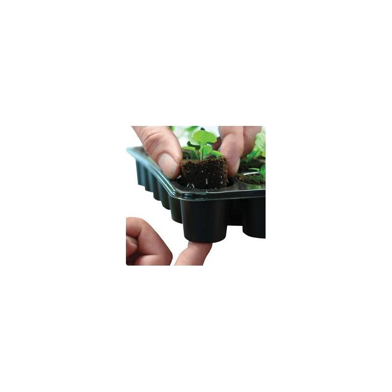 Plateau 24 éponges Sphaigne pour semis et bouture