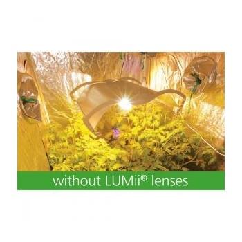 Sans Lunette Lumii