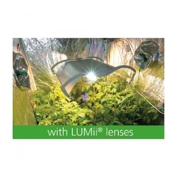 avec Lunette Lumii
